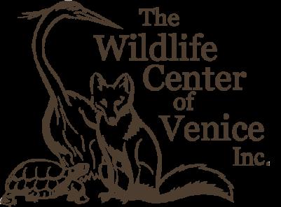 wcv_logo-401x296